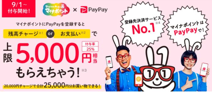 マイナポイント_PayPay